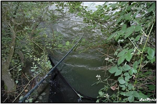La pêche à roder (stalking) Combat10