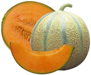 Spécialités Charentaises Melon_10