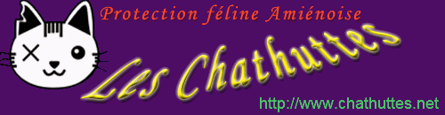 Association des Chathuttes