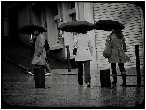 protégeons nous de la pluie Image107