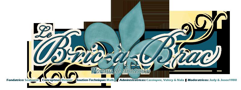 Forum  ~ Le Bric-À-Brac ~ Logo13