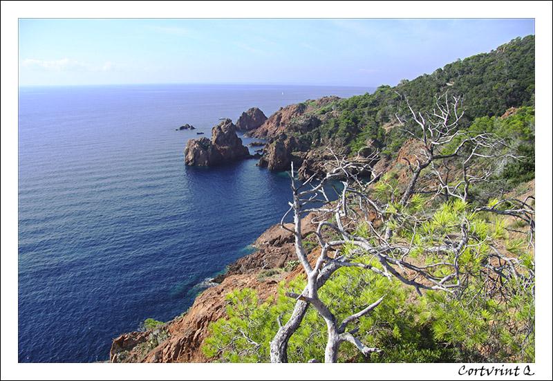 Côte d'Azur Cap_dr10
