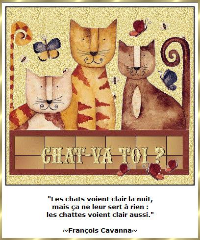 Les citations en images : Les chats Gi-pen12