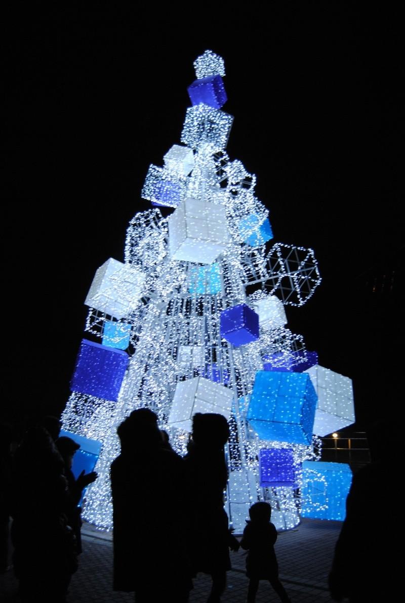 Noël 2011 / Lancement de la saison 2012 - dès le 17/12/2011 - Page 5 Dsc_0117
