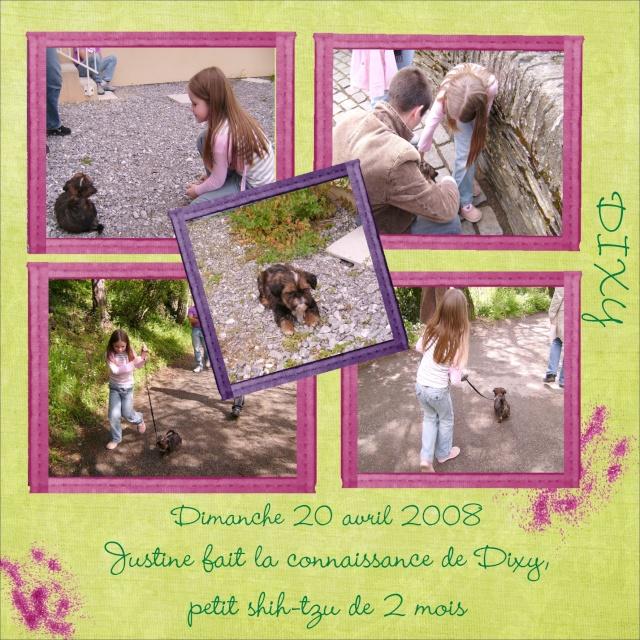 A mon tour ! Dixy2011