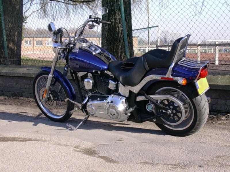 Combien de Softail sur le forum Passion-Harley - Page 2 Pata-f10