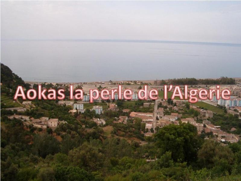 Aokas pour les nostalgiques - Page 20 185