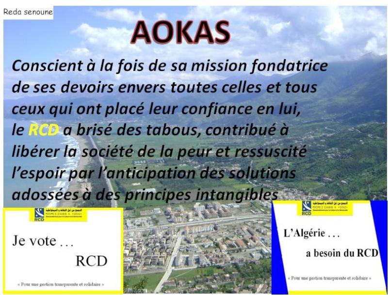 Aokas pour les nostalgiques - Page 2 2013