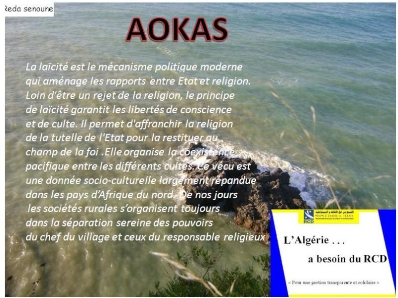 Aokas pour les nostalgiques - Page 2 2213