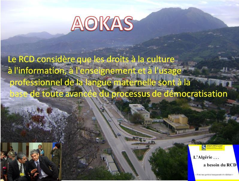 Aokas pour les nostalgiques - Page 3 3010