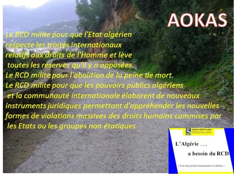 Aokas pour les nostalgiques - Page 3 3110