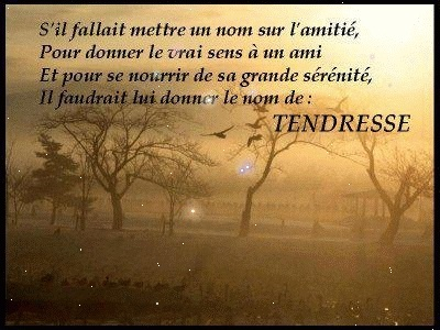 proverbes ...... citations........dictons........... - Page 5 Tendre10