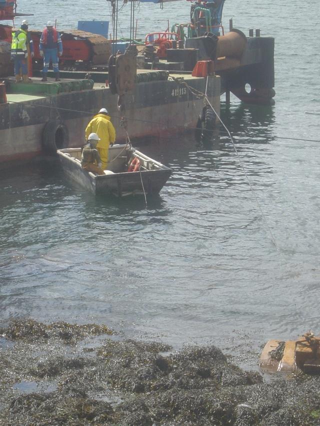 Le port de plaisance de BREST CHATEAU Dsc04322