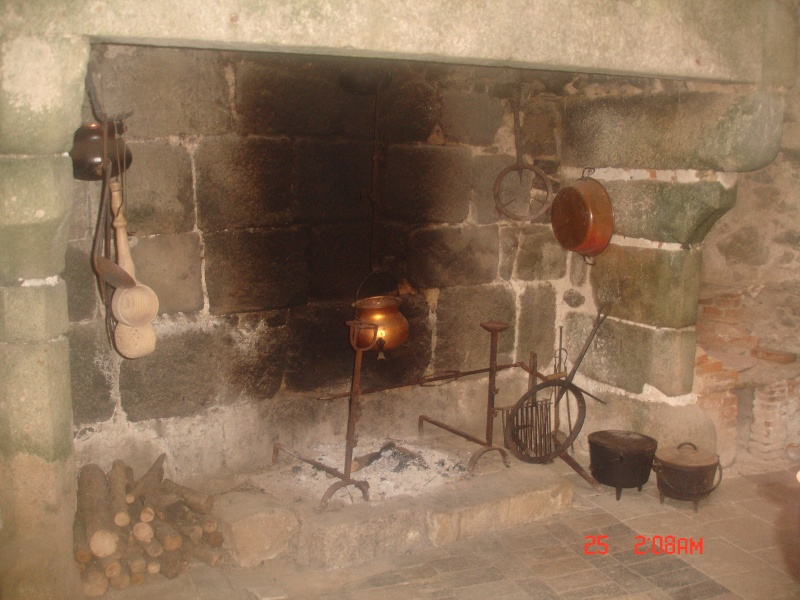 chateau de  Saint Mesmin Dsc04619