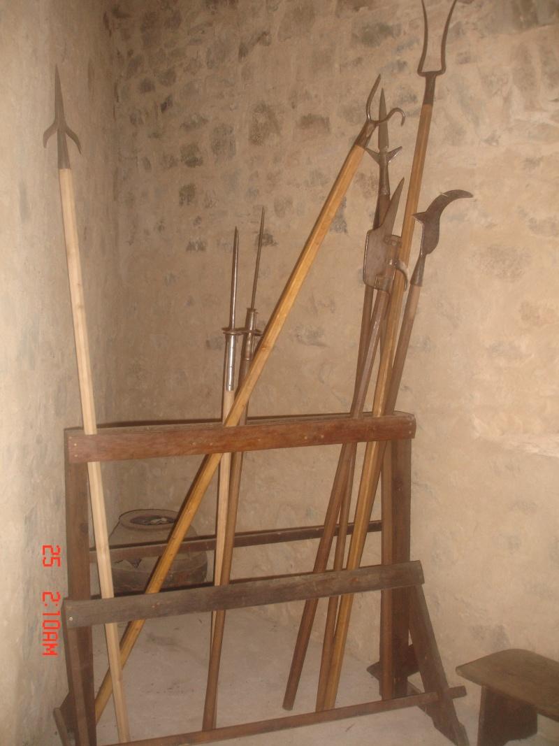 chateau de  Saint Mesmin Dsc04620