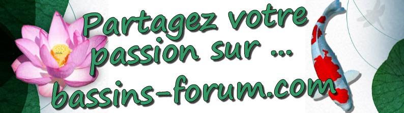 Bassins Forum