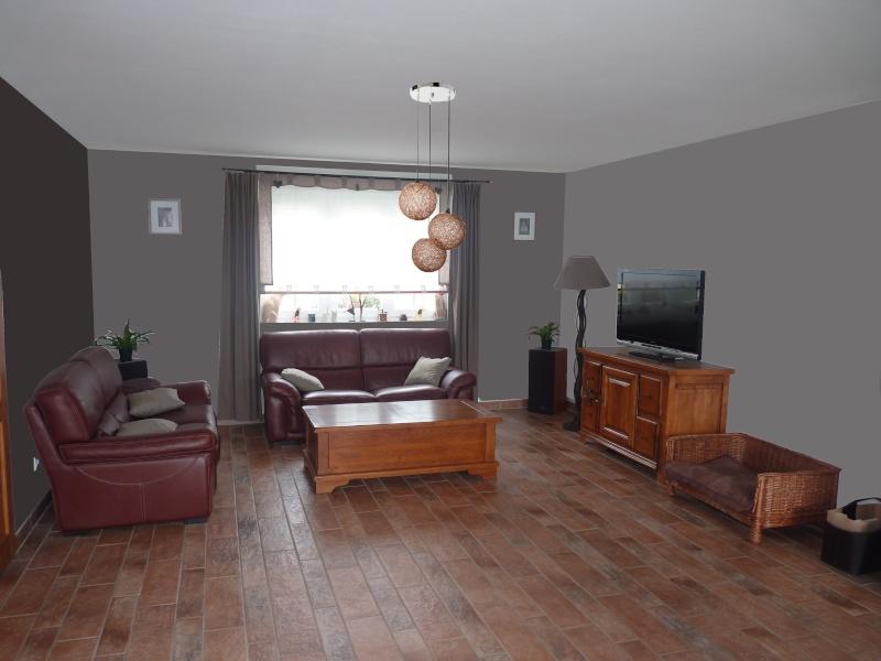 Passer du blanc la couleur salon s jour fini et voil les photos page 1 page 1 - Couleur mur pour salon ...