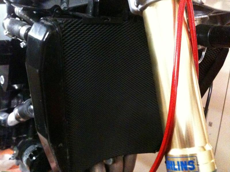 grille de protection radiateur R&G Img_0426