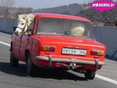 Naturmobil.... 11706110