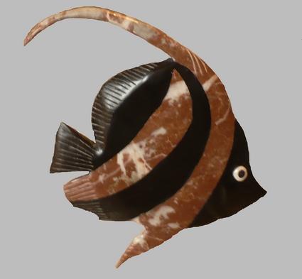 heniochus P1000614