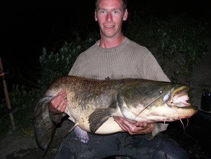 Pêche 100% sauvage sur le grand Rhône, Silure10