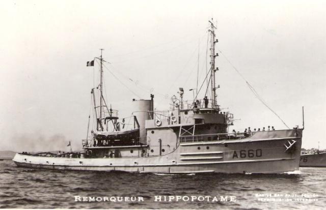HIPPOPOTAME (RHM ) 152