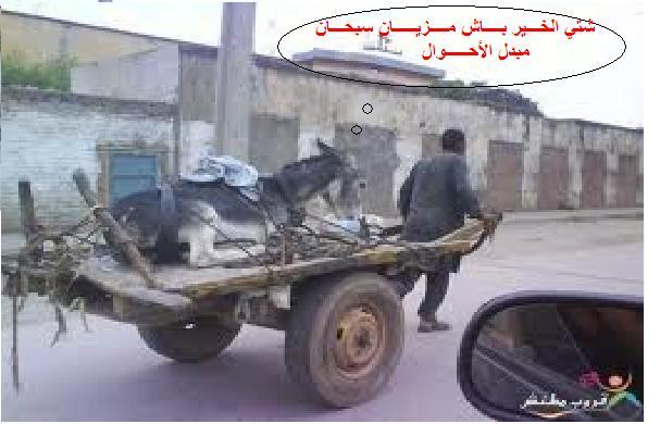 GAL ALLAH NDAHKOU Images20