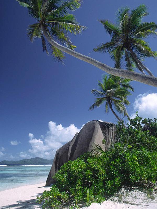 Anse de la source, la digue, seychelles,ocean indien Anse410