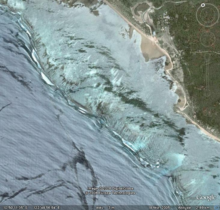 Barre, Mer de sébu , timor, Asie Barre10
