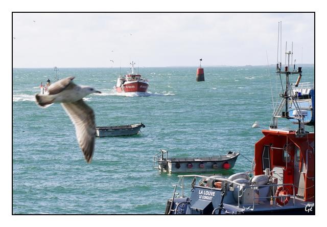 [Vie des ports] Le Conquet 20080313