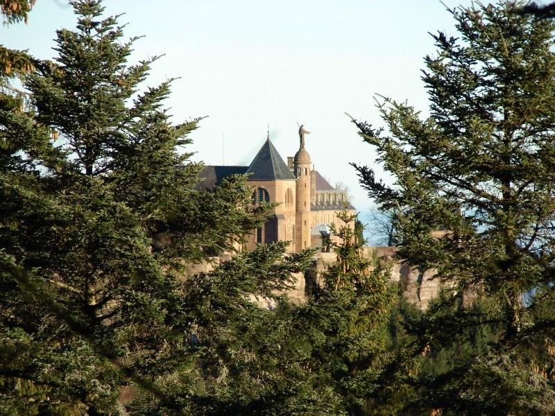 Mont sainte odile dept67 France Dsc00511