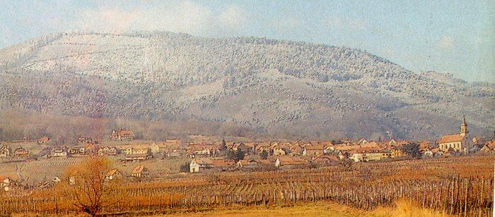 Mont sainte odile dept67 France La_blo10