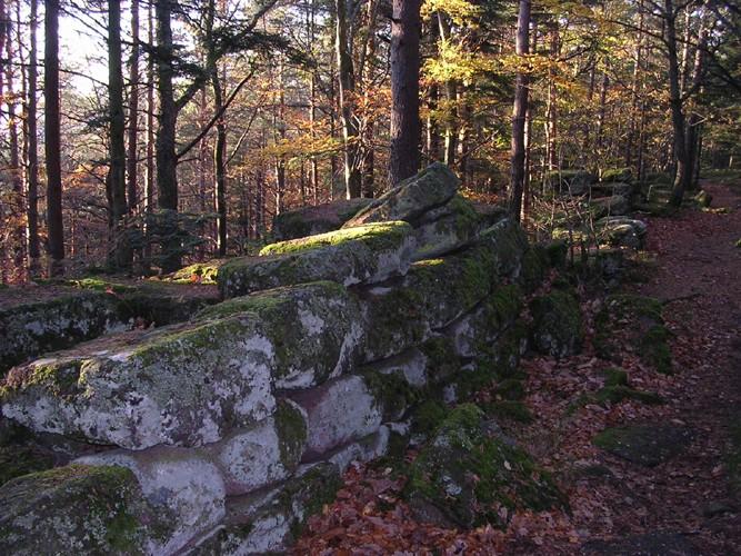 Mont sainte odile dept67 France Mur0510