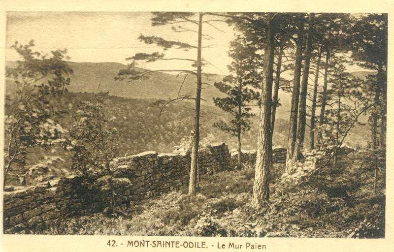 Mont sainte odile dept67 France Mur_pa10