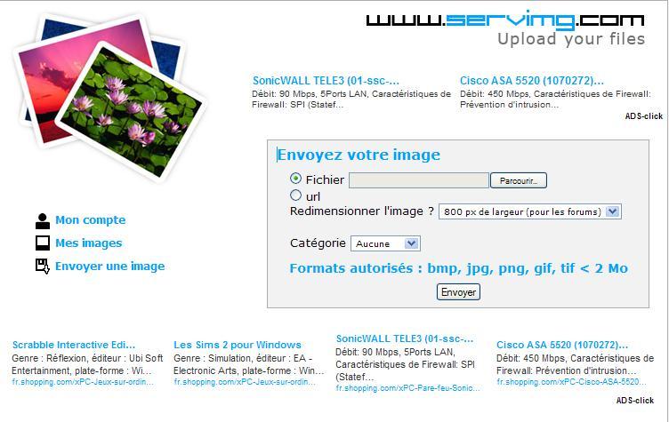 mettre une photo avec servimg.com 210