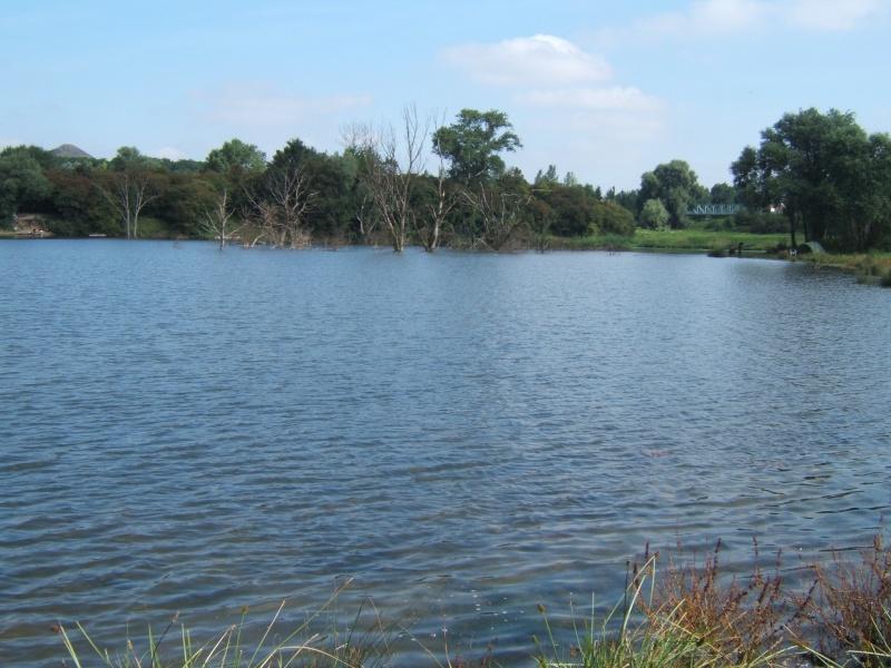 l'étang de harnes Cote_d10