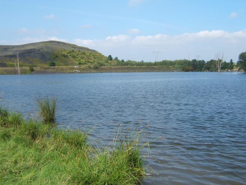 l'étang de harnes Cote_g10