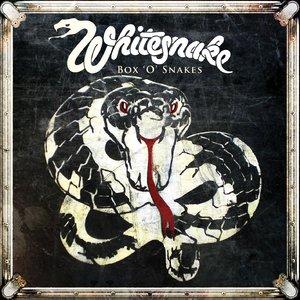 Whitesnake Whites22