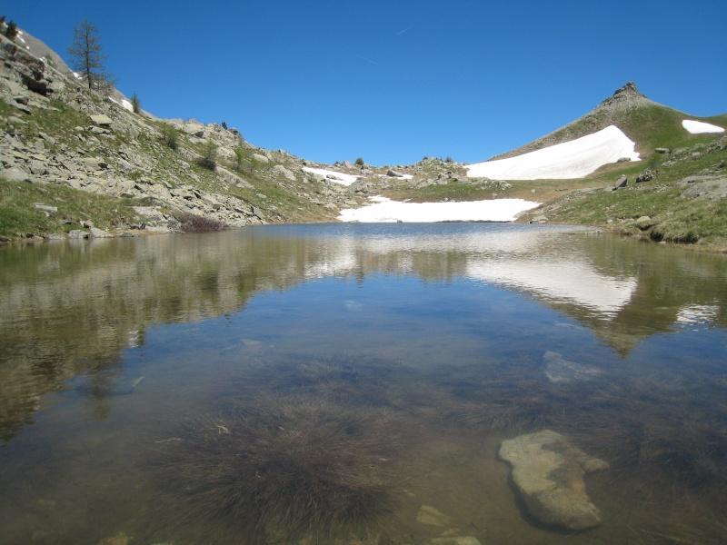 La Route des Grandes Alpes - Page 19 11727210