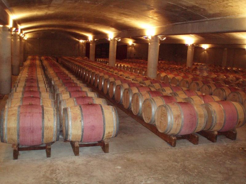 Le vignoble du Pessac Leognan - Page 3 Barriq10