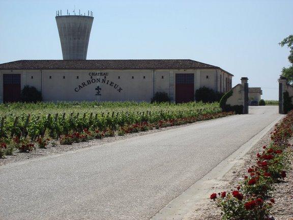 Le vignoble du Pessac Leognan - Page 3 Dsc00510