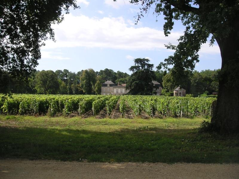Le vignoble du Pessac Leognan - Page 8 Flickr10