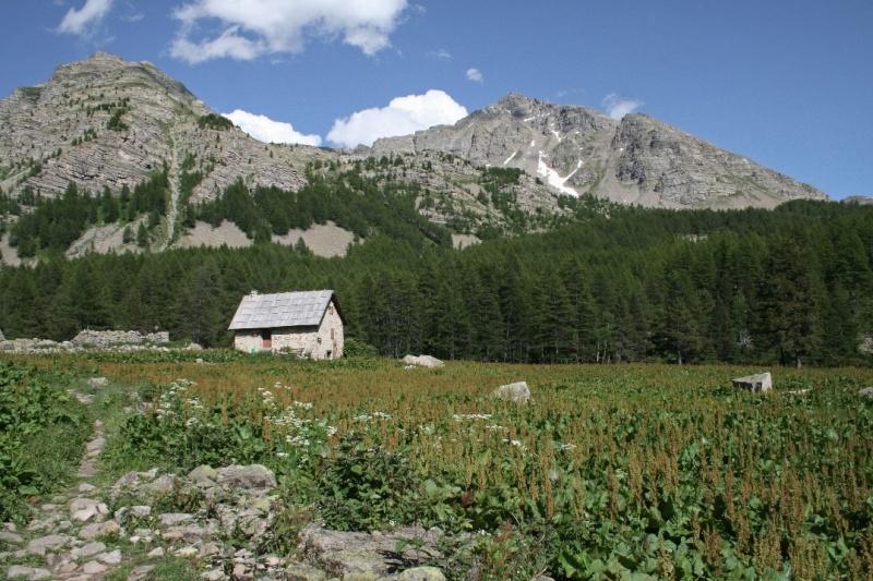 La Route des Grandes Alpes - Page 19 Sans_364