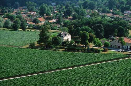 Le vignoble du Pessac Leognan - Page 2 Yab0210