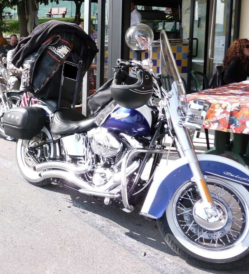 Combien de Softail sur le forum Passion-Harley P1010410