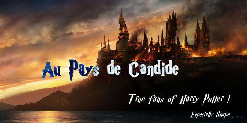 Au pays de Candide 2.2