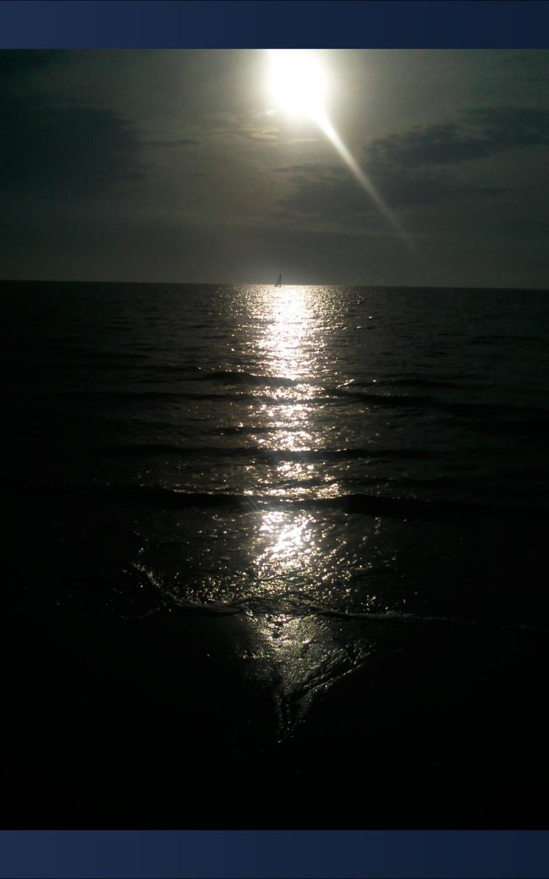 Fée face à la mer SUITE ET FIN + les photos.... 2210