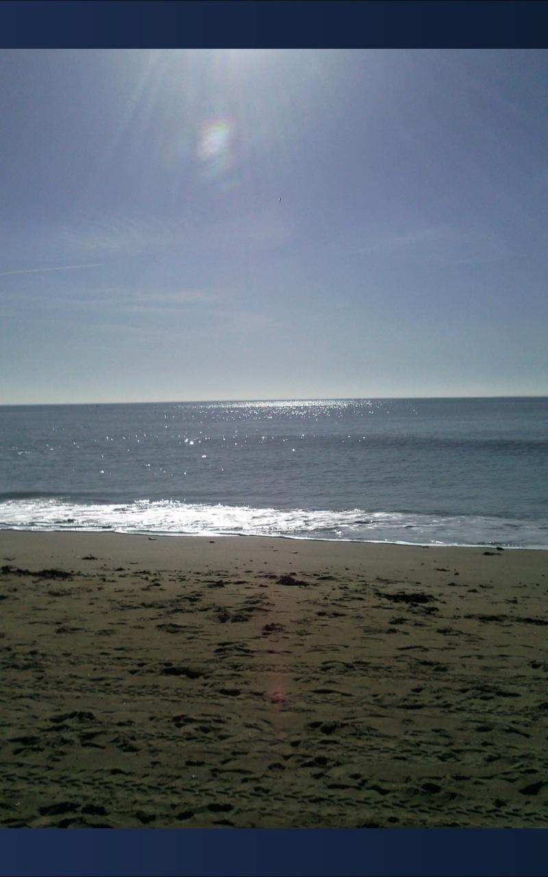 Fée face à la mer SUITE ET FIN + les photos.... 810