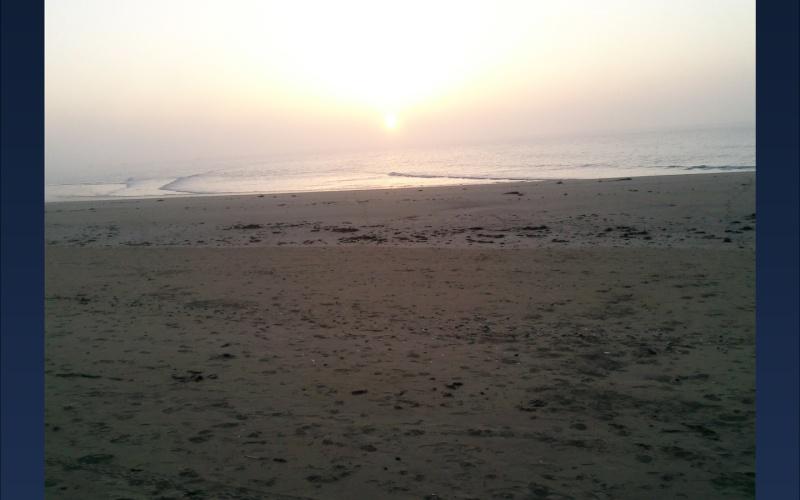 Fée face à la mer SUITE ET FIN + les photos.... 910