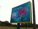 Publicité / campagnes d'affichage urbain - Page 3 Img_1119